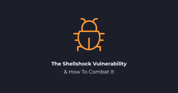 The Shellshock Vulnerability and How To Combat It