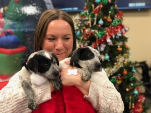 Animal Humane Society Rescue Animal Visit